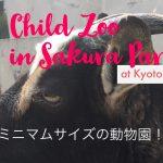 ミニマムサイズ!京都八幡市さくら公園の「こども動物園」に行ってきました。近場のお出かけプラン提案も