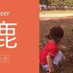 1歳児と奈良公園に行ってシカとたわむれた話